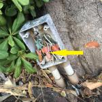 This is a landscape lighting outlet box. It is very unsafe without a cover. The black wire, indicated by the yellow arrow, is LIVE!. Some child could run up to this and stick her hand on the tip of the black wire and get the shock of her life.
